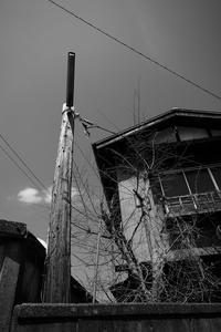 木の電燈 - 節操のない写真館