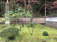 2019.4.21 今日は、午後1時半から月照寺で茶筅供養 - 奈良 京都 松江。 国際文化観光都市  松江市議会議員 貴谷麻以  きたにまい