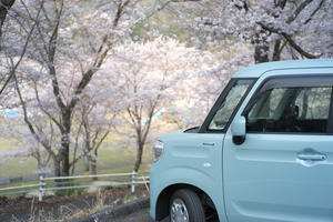 Spring Drive -
