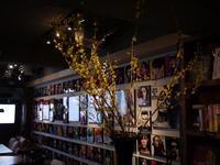 今週のWORLD BOOK CAFEさんは「レンギョウ」。2019/04/20。 - 札幌 花屋 meLL flowers