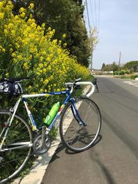 筑波山のふもとまでロードバイクで行ってきました。 - pottering
