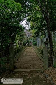 桜山神社 - Mark.M.Watanabeの熊本撮影紀行