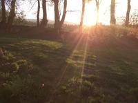 Happy Easter - イギリス ウェールズの自然なくらし