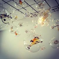 深海ラボ Yoshie Meguro Glass Exhibition 明日まで - 坂日和