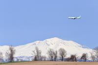 晴れた日はピクニック~旭川空港・美瑛~ - 自由な空と雲と気まぐれと ~from 旭川空港~