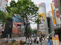 4月22日㈪の109前交差点 - でじたる渋谷NEWS