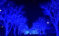 今年も青の世界へ - 小鉄と斗和の親子日記