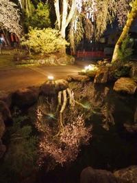千手院の夜桜と満月 - 浦佐地域づくり協議会のブログ