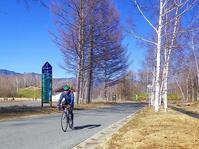 自転車の季節になってきました~。@乗鞍高原。 - 乗鞍高原カフェ&バー スプリングバンクの日記②