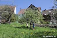 イースターの庭と無線機 - 黒い森の白いくまさん