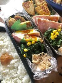 4月23日(火)キセキ〜 - 高校男子弁当ときどき趣味&動物