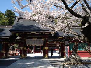 塩釜神社桜4/16撮影 - MOTO_EMGと秘密の部屋