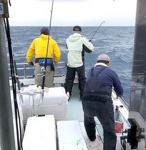 今年の中部の海はスゴイ - ビッグゲームルアーズ 最新オフショアブログ カジキ・マグロトローリング