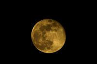平成最後の満月はピンクムーン - スポック艦長のPhoto Diary