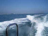 日曜日は三池港から遊漁船に乗り沖釣りへ - ステンドグラスルーチェの日常