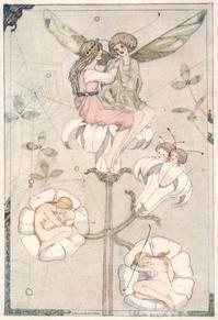 Cecile Walton画「おやゆびひめ」 - Books
