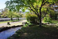 七十五回目のピクニックは『石屋川公園』 - 写真酒