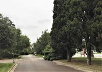 バラ公園の散策 - gyuのバルセロナ便り  Letter from Barcelona