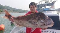 タイラバ - 五島列島 遊漁船 MANA 釣果情報 ヒラマサ