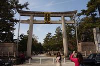 北野天満宮の桜 - アンチLEICA宣言