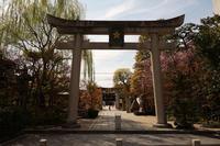 平成の晴明神社 - アンチLEICA宣言