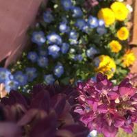 何しよう^_^; - ~おざなりholiday's^^v~ <フィルムカメラの写真のブログ>