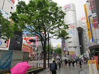 4月24日㈬の109前交差点 - でじたる渋谷NEWS