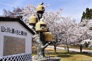 桜と猫ちぐら -