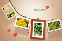 ボロボロになった花たち、、 - mypotteaセンチメンタルな日々with photos5