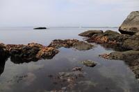 江の島散策 part 1 - うろ子とカメラ。