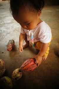 子連れバックパッカー、ベトナムの旅⑧カカオを巡るたび。 - 手作り生活~道草日記~