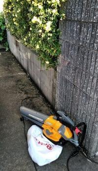 庭作業 - うまこの天袋