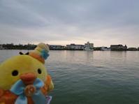 ☆トリ旅 in 新潟☆ - やいやい畑
