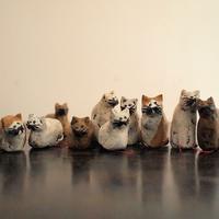 イワサトミキさんのネコみくじ - warble22ya