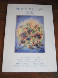 種まきカレンダー2019あります - 南阿蘇 手づくり農園 菜の風