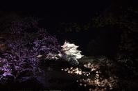 姫路城の夜桜(2019/4/5)其の③ - 南の気ままな写真日記