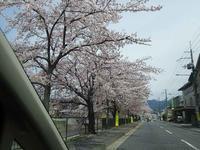 京都散策の続きです - 操の気まぐれ日記