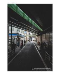 小さな幸運 - ♉ mototaurus photography