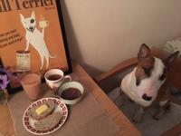 餡子のある朝ごはん - ミニチュアブルテリア ダージと一緒3