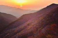 春色の山肌木梶山 - 峰さんの山あるき