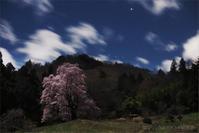 里山 桜星景 - 遥かなる月光の旅