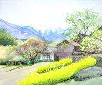 菜の花と中央アルプスの競演 - ryuuの手習い