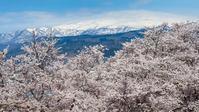 2019/4/22 月山~能生へ - 流雲 蒼穹 風に吹かれて