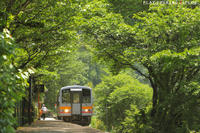 緑の中の小さな駅 - PTT+.