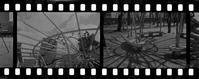 モノクロポジの自家現像 - mglss studio photography blog