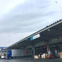 平成最後のブログ貨物到着と5月のお知らせ - DAR YASMINE  徒然  北アフリカ・チュニジア専門店より