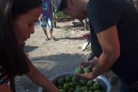 Choosing fruits and vegetables (Takan Mercado) - SONGS