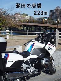 今年二度目のクシタニCBM長浜水鳥ステーションへ行ってきた(4/20) - SAMとバイクとpastime