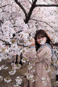 桜模様 #20 - 夢幻泡影