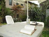 本屋大賞受賞の「かがみの孤城」を読み始めて - ピアノ日誌「音の葉、言の葉。」(おとのは、ことのは。)